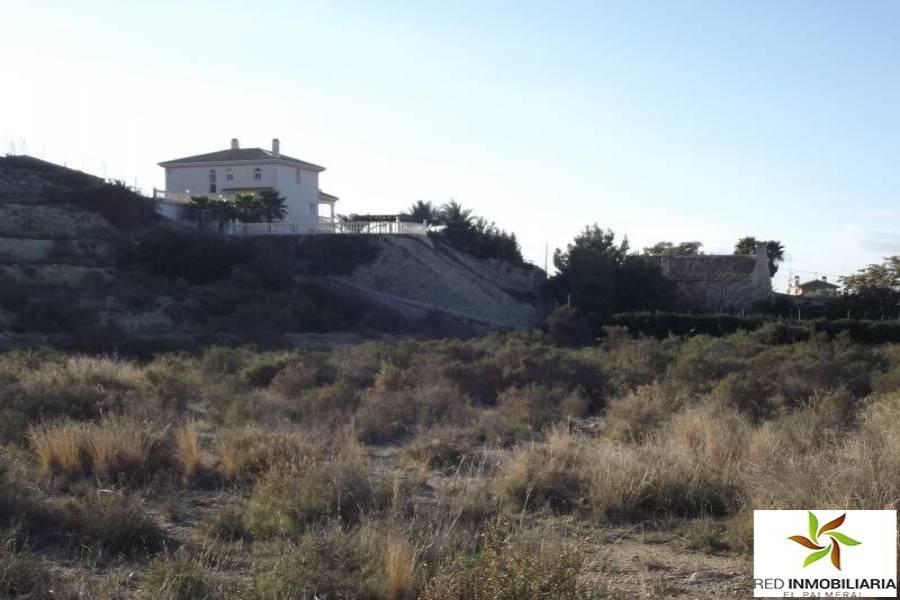 Elche,Alicante,España,Parcela,34147