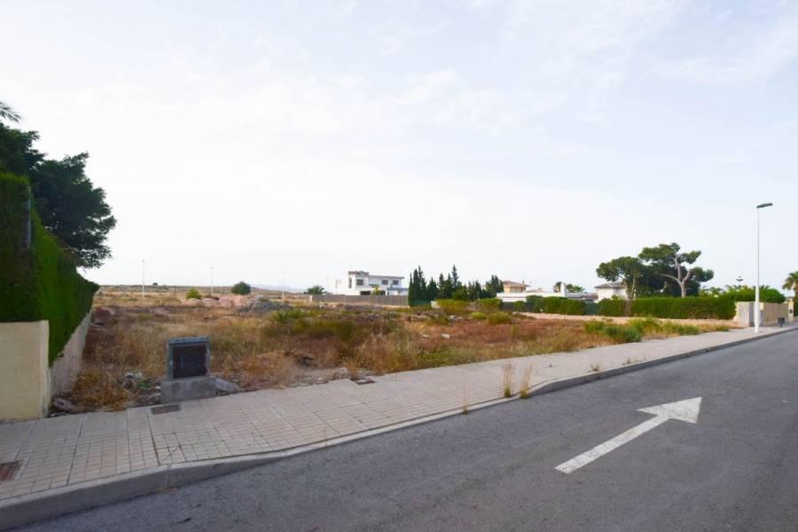 Elche,Alicante,España,Parcela,34204