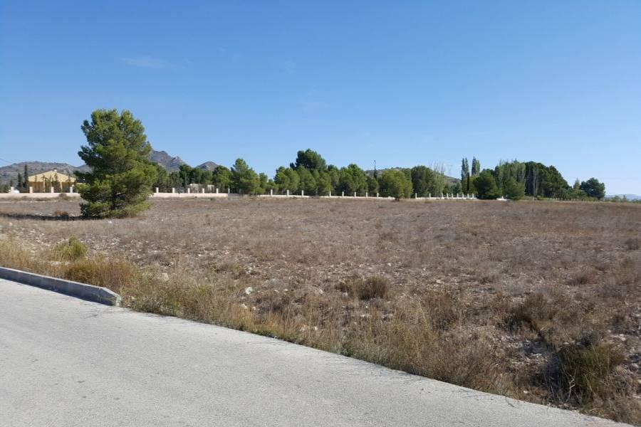 Salinas,Alicante,España,Parcela,34247