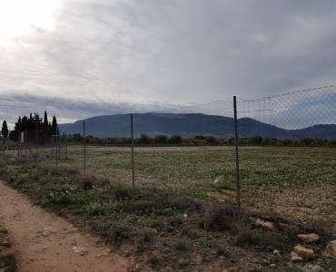 Biar,Alicante,España,Parcela,34277