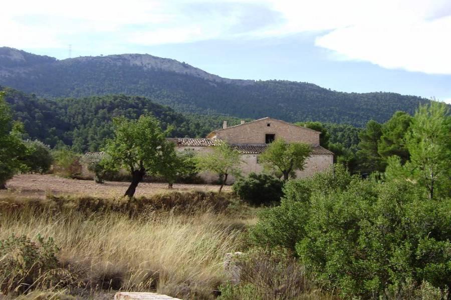 Castalla,Alicante,España,Lotes-Terrenos,34280