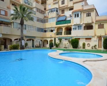 Torrevieja,Alicante,España,1 Dormitorio Bedrooms,1 BañoBathrooms,Apartamentos,34313