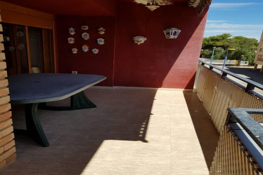 Torrevieja,Alicante,España,3 Bedrooms Bedrooms,2 BathroomsBathrooms,Apartamentos,34334