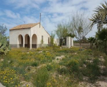 Elche,Alicante,España,Parcela,34390