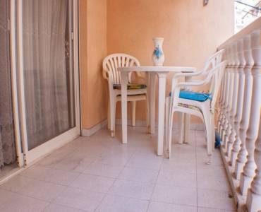 Torrevieja,Alicante,España,1 Dormitorio Bedrooms,1 BañoBathrooms,Apartamentos,34403