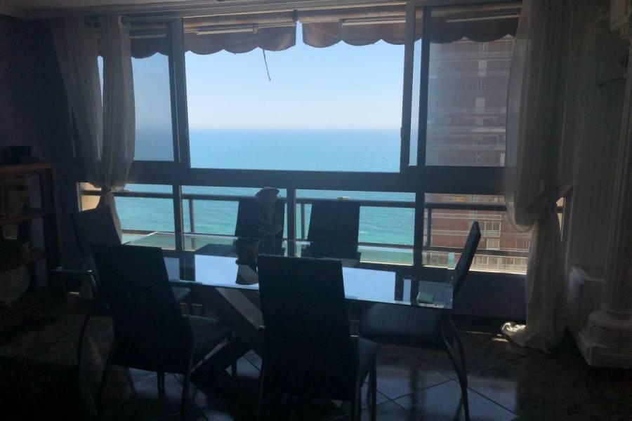 Alicante,Alicante,España,1 Dormitorio Bedrooms,1 BañoBathrooms,Apartamentos,34504