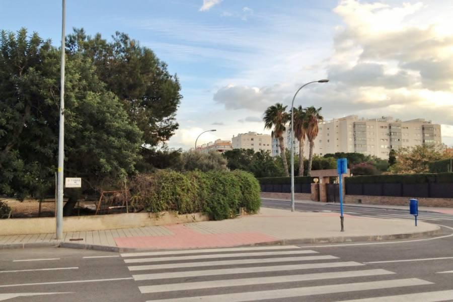 Alicante,Alicante,España,Parcela,34505