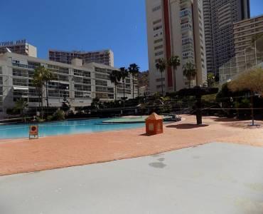 Benidorm,Alicante,España,1 Dormitorio Bedrooms,1 BañoBathrooms,Apartamentos,34523