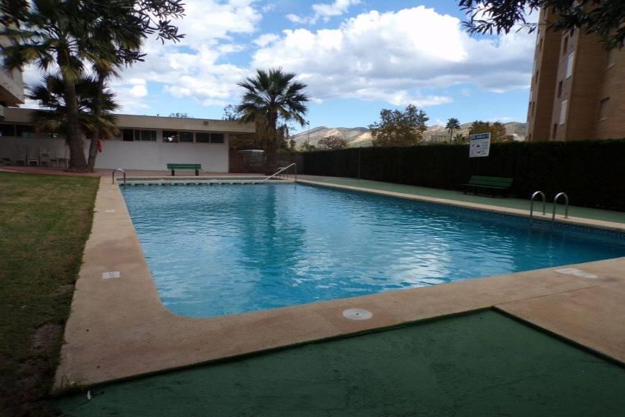 Benidorm,Alicante,España,1 Dormitorio Bedrooms,1 BañoBathrooms,Apartamentos,34530