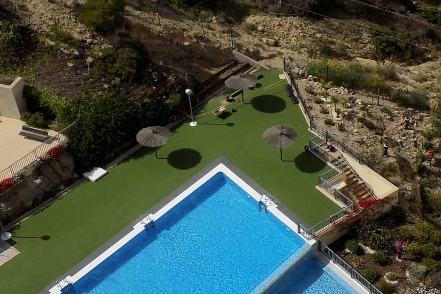 Benidorm,Alicante,España,1 Dormitorio Bedrooms,1 BañoBathrooms,Apartamentos,34537