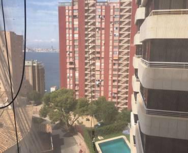 Benidorm,Alicante,España,1 Dormitorio Bedrooms,1 BañoBathrooms,Apartamentos,34541