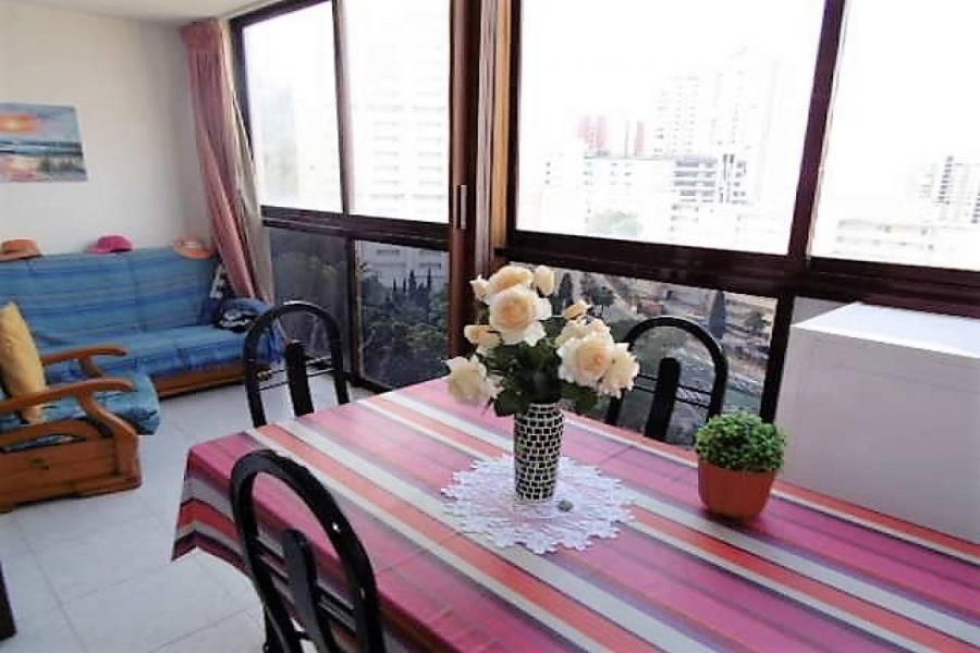 Benidorm,Alicante,España,1 Dormitorio Bedrooms,1 BañoBathrooms,Apartamentos,34553