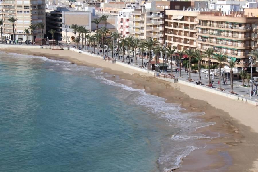 Torrevieja,Alicante,España,3 Bedrooms Bedrooms,2 BathroomsBathrooms,Atico,34564