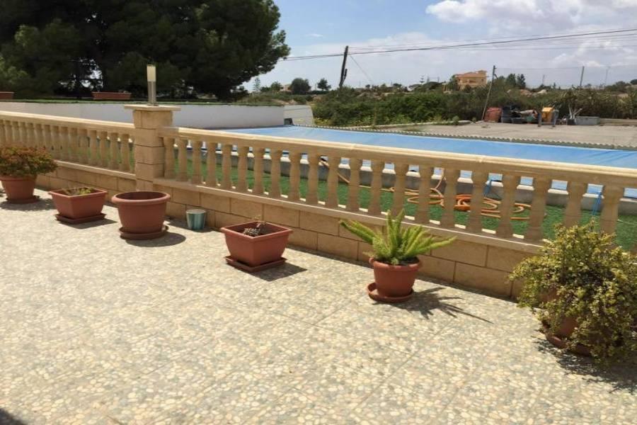 Elche,Alicante,España,5 Bedrooms Bedrooms,4 BathroomsBathrooms,Chalets,34575