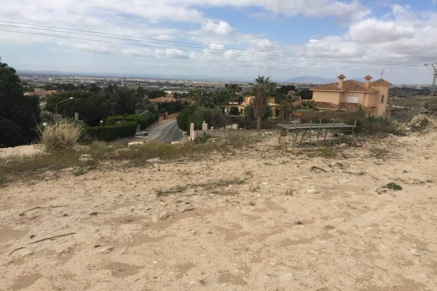 Elche,Alicante,España,Parcela,34590