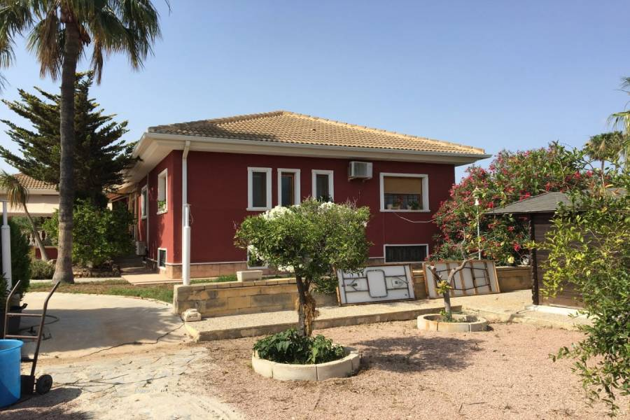 Elche,Alicante,España,5 Bedrooms Bedrooms,4 BathroomsBathrooms,Chalets,34641
