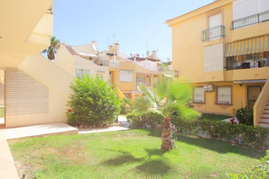 Torrevieja,Alicante,España,2 Bedrooms Bedrooms,1 BañoBathrooms,Planta baja,34749