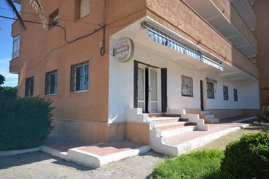 Guardamar del Segura,Alicante,España,4 Bedrooms Bedrooms,1 BañoBathrooms,Apartamentos,34790