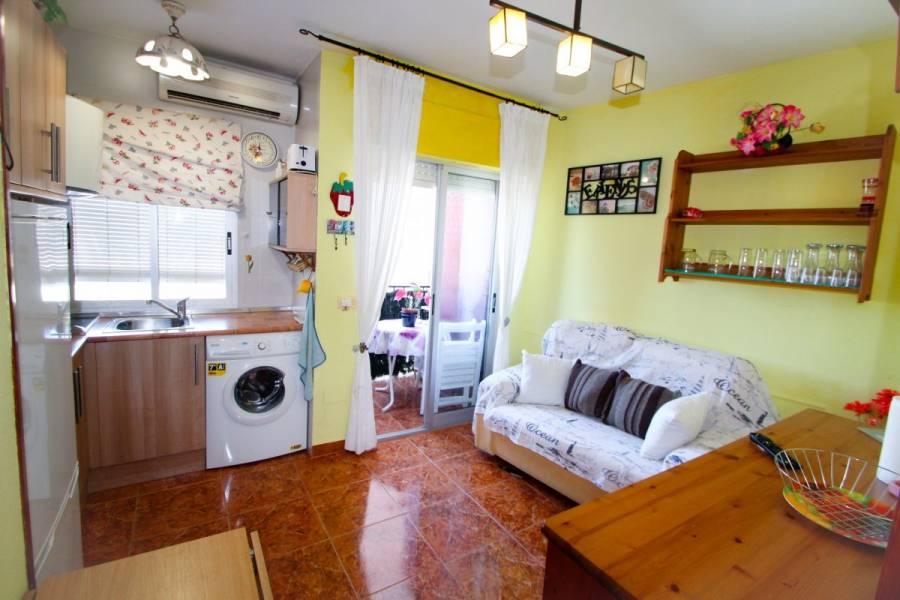 Torrevieja,Alicante,España,1 Dormitorio Bedrooms,1 BañoBathrooms,Apartamentos,34800