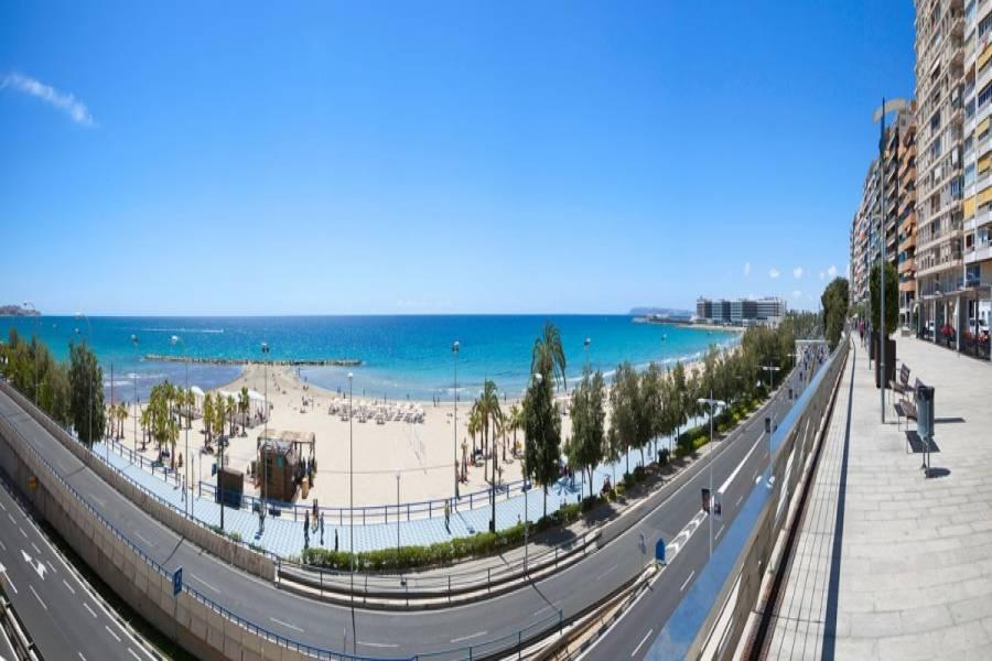 Alicante,Alicante,España,1 Dormitorio Bedrooms,1 BañoBathrooms,Apartamentos,34805
