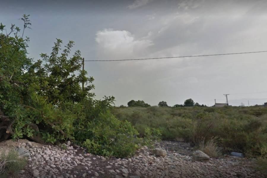 Crevillent,Alicante,España,Lotes-Terrenos,34826