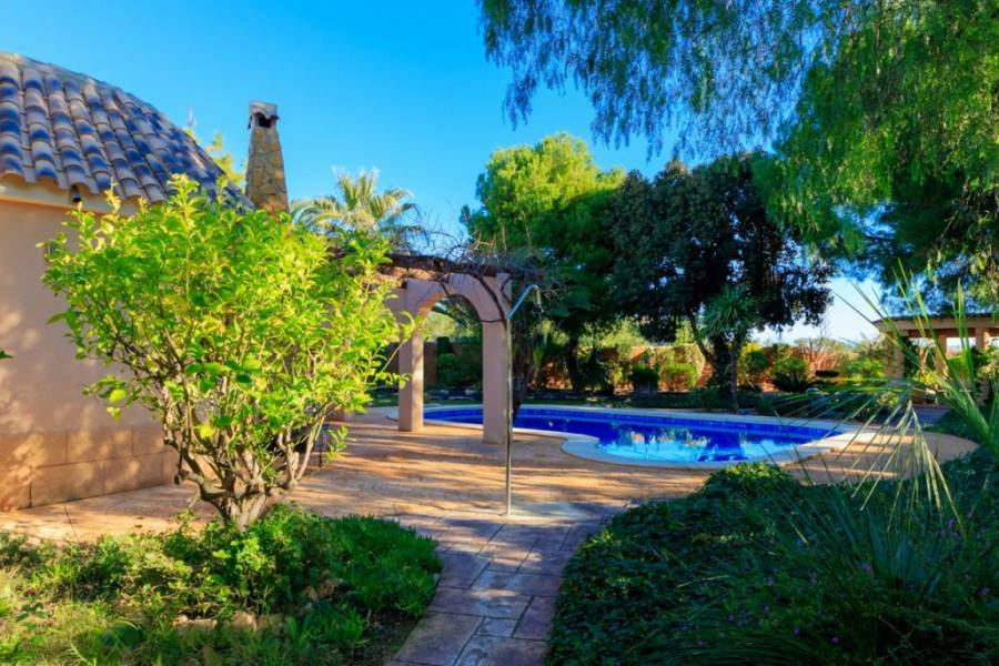Orihuela Costa,Alicante,España,4 Bedrooms Bedrooms,3 BathroomsBathrooms,Casas,34975