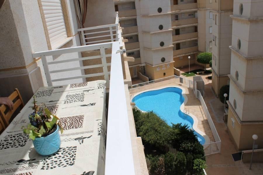 Torrevieja,Alicante,España,2 Bedrooms Bedrooms,1 BañoBathrooms,Apartamentos,34982