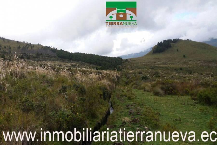 """Propiedad de 12 hectáreas ubicada en Cayambe en el sector de Turupamba apta para cabañas con una altitud de 3600msnm tiene ojos de agua. A 4000 por hectárea   Con una vista espectacular al Nevado Cayambe y a sus alrededores.  PRECIO: 60.000 NEGOCIABLE Propiedad de 12 hectáreas ubicada en Cayambe en el sector de Turupamba apta para cabañas con una altitud de 3600msnm tiene ojos de agua. A 4000 por hectárea   Con una vista espectacular al Nevado Cayambe y a sus alrededores.  PRECIO: 60.000 NEGOCIABLE Para mayor información y ventas visítanos en nuestra oficina:  INMOBILIARIA TIERRA NUEVA Dirección Cayambe, Av. Natalia Jarrín y Bolívar – Paseo Comercial """"El Redondel"""" Local #20  Teléfonos: fijo: (02) 2111 9 Whatsapp:  593980247008 https://chat.whatsapp.com/HfA6fXdTBcq7LDQ4iW1esD Email: cayambe@inmobiliariatierranueva.ec Website: www.inmobiliariatierranueva.ec CAYAMBE–ECUADOR"""