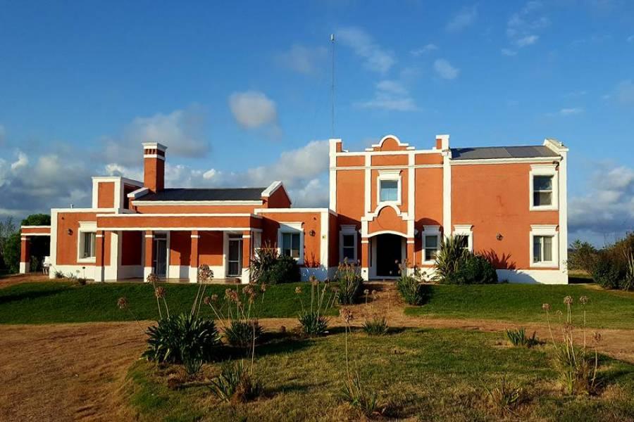 Sauce de Portezuelo,Maldonado,Uruguay,Finca,4124