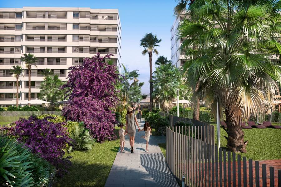 Torrevieja,Alicante,España,2 Bedrooms Bedrooms,2 BathroomsBathrooms,Apartamentos,39094