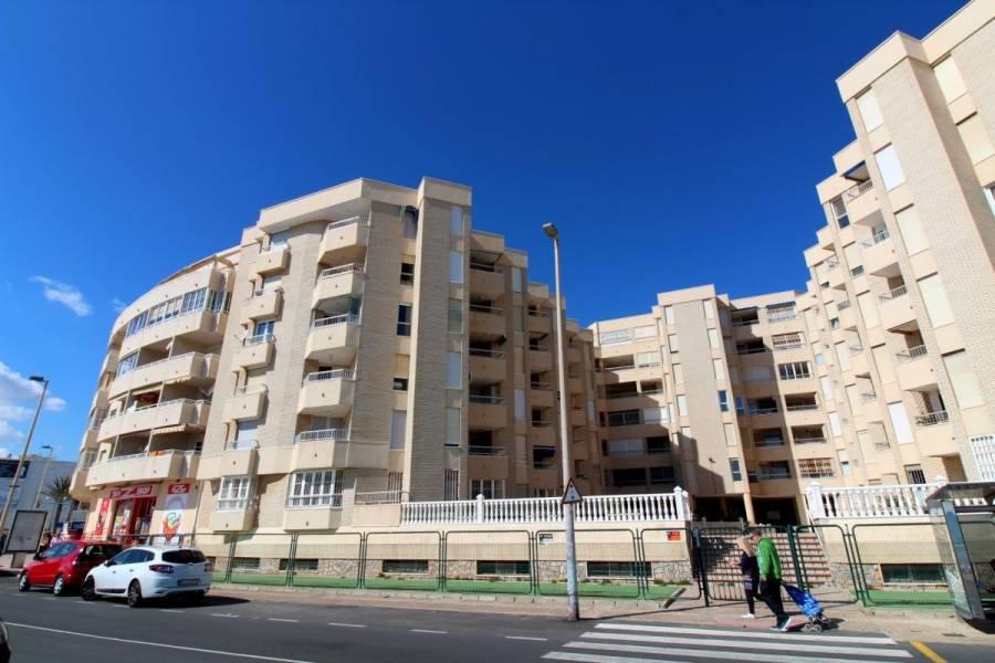 Torrevieja,Alicante,España,3 Bedrooms Bedrooms,2 BathroomsBathrooms,Apartamentos,39106