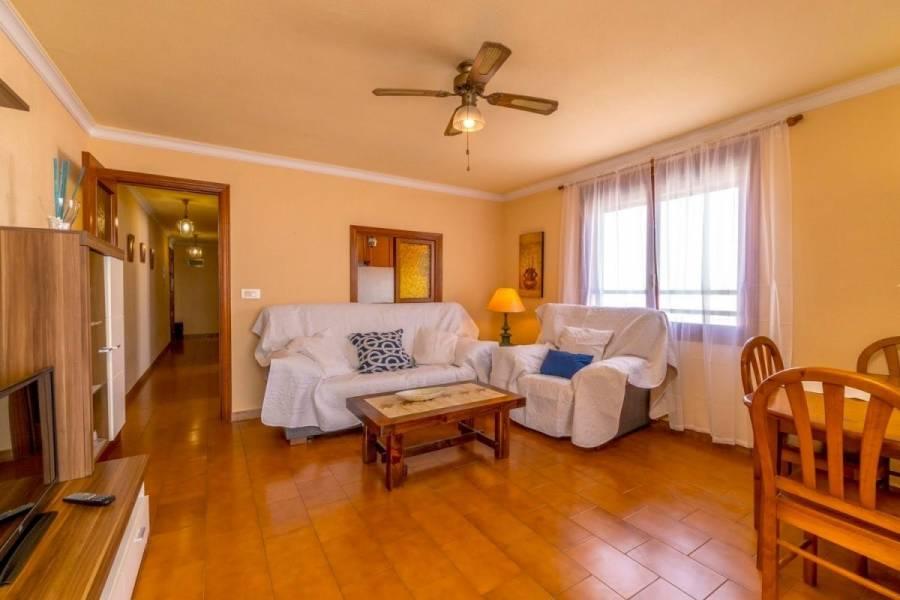 Torrevieja,Alicante,España,1 Dormitorio Bedrooms,1 BañoBathrooms,Apartamentos,39153