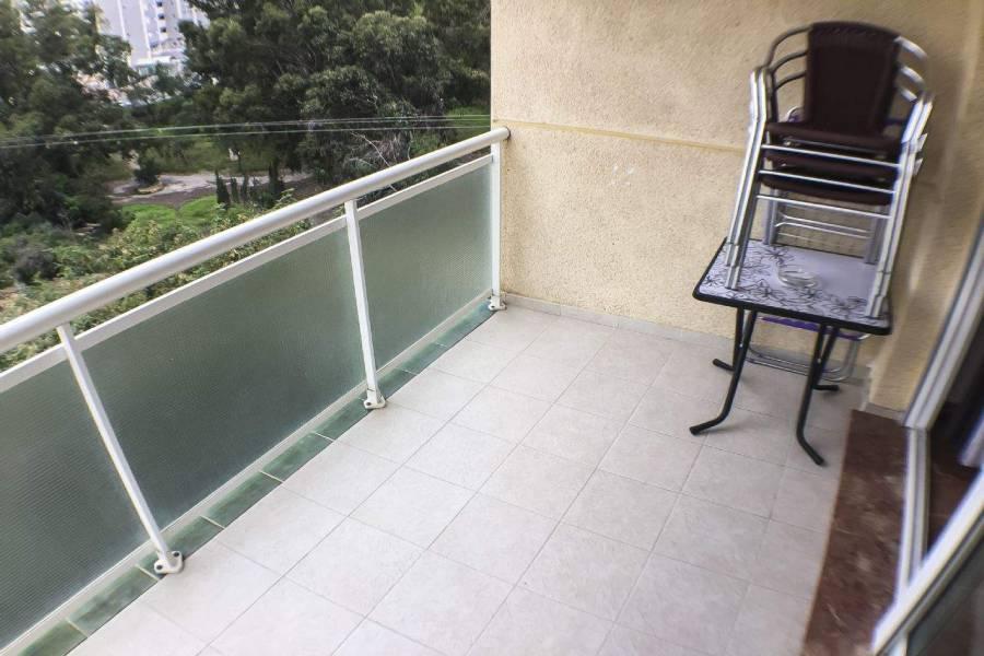 Benidorm,Alicante,España,1 Dormitorio Bedrooms,1 BañoBathrooms,Apartamentos,39588