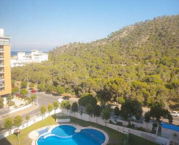 Benidorm,Alicante,España,1 Dormitorio Bedrooms,1 BañoBathrooms,Apartamentos,39610