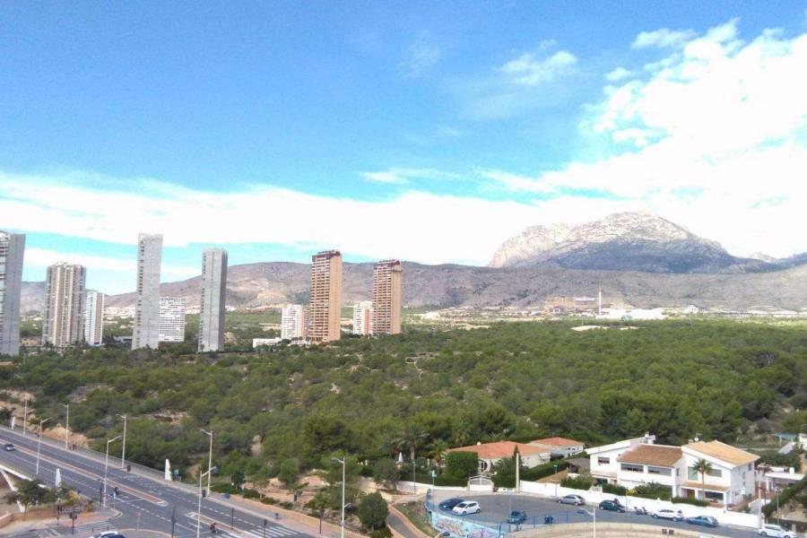 Benidorm,Alicante,España,1 Dormitorio Bedrooms,1 BañoBathrooms,Apartamentos,39661
