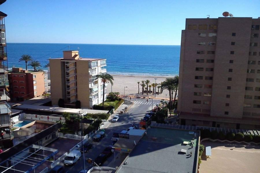 Benidorm,Alicante,España,1 BañoBathrooms,Apartamentos,39709