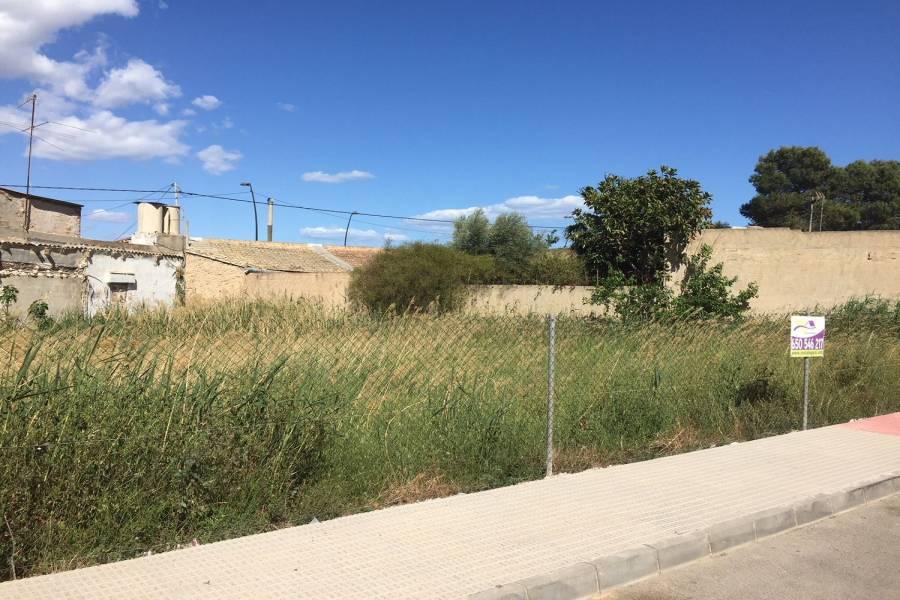 Formentera del Segura,Alicante,España,Lotes-Terrenos,39852