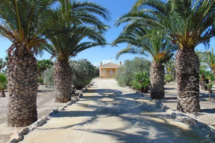 Guardamar del Segura,Alicante,España,1 BañoBathrooms,Casas,39855