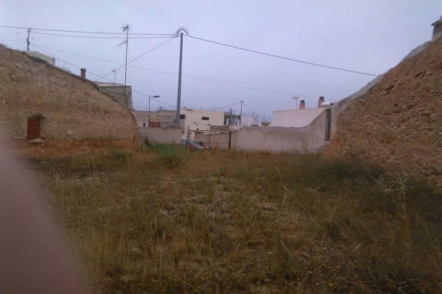 Crevillente,Alicante,España,Lotes-Terrenos,39873
