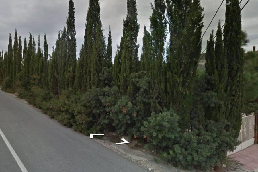 Torrevieja,Alicante,España,Lotes-Terrenos,39891