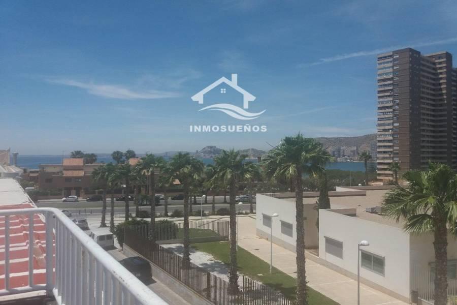 Alicante,Alicante,España,Casas,39935