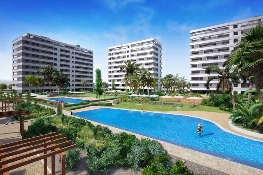 Torrevieja,Alicante,España,2 Bedrooms Bedrooms,2 BathroomsBathrooms,Apartamentos,40041