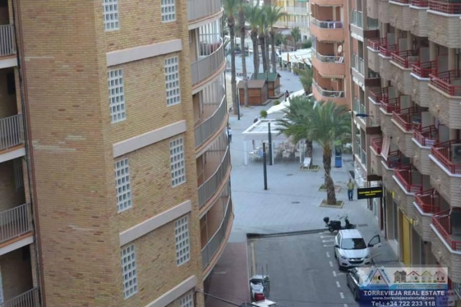 Torrevieja,Alicante,España,3 Bedrooms Bedrooms,2 BathroomsBathrooms,Apartamentos,40201