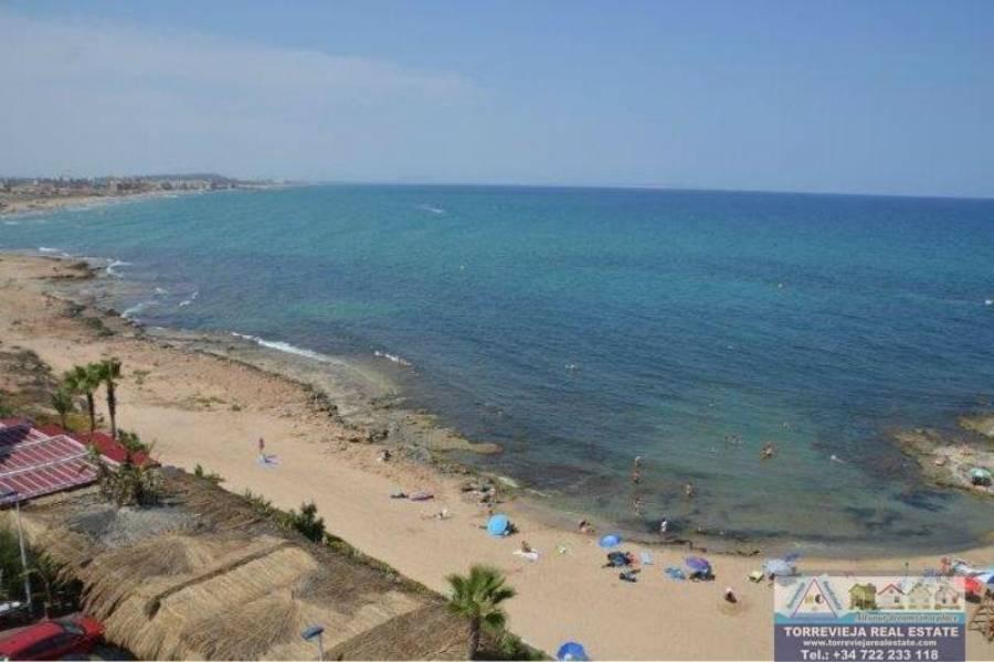 Torrevieja,Alicante,España,1 Dormitorio Bedrooms,1 BañoBathrooms,Apartamentos,40214