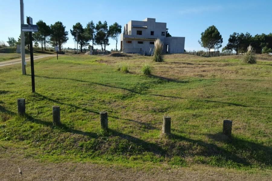Santa Teresita, Buenos Aires, Argentina, ,Lotes-Terrenos,Venta,LAS ACACIAS 3,40768