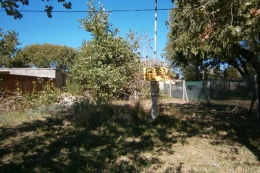 Santa Teresita, Buenos Aires, Argentina, ,Lotes-Terrenos,Venta,48,40785