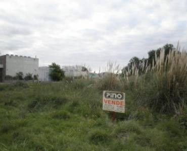 Las Toninas, Buenos Aires, Argentina, ,Lotes-Terrenos,Venta,24,40817