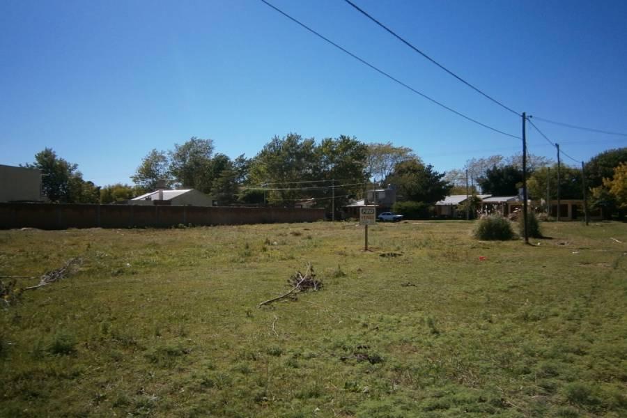 Santa Teresita, Buenos Aires, Argentina, ,Lotes-Terrenos,Venta,49,40852
