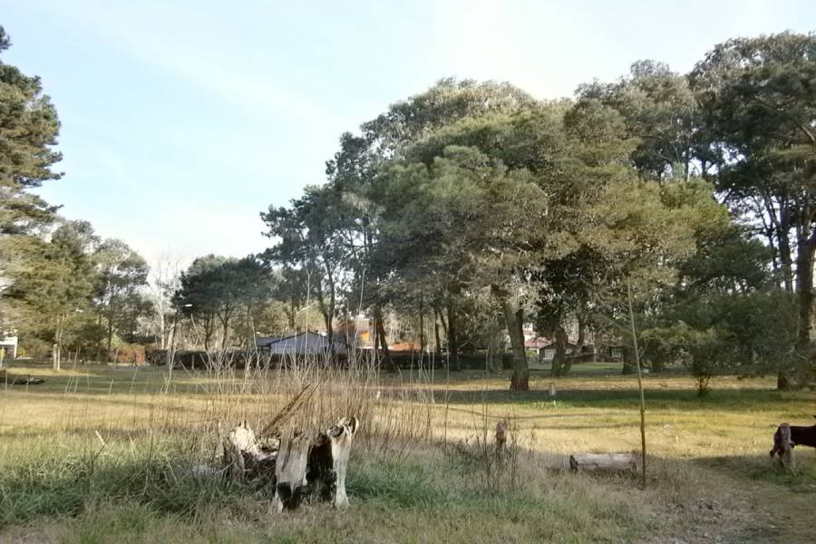 Santa Teresita, Buenos Aires, Argentina, ,Lotes-Terrenos,Venta,JUJUY,40865