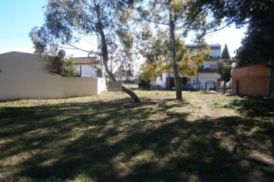 Santa Teresita, Buenos Aires, Argentina, ,Lotes-Terrenos,Venta,44,40866